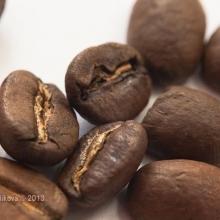 Kávové opojení